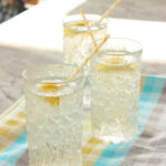 Summer Vodka Spritzer easy drink cocktail recipe low cal