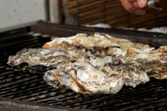 Japanese traditional grilled oysters