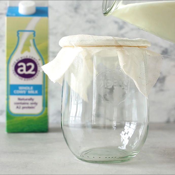 glass jar covered with cheese cloth,, glass jug pouring homemade kefir into the jar, a2 milk carton in the background