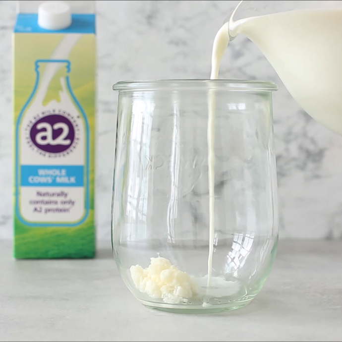 glass jar with kefir grains, glass jug pouring milk into the jar, a2 milk carton in the background