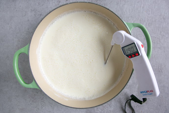 milk and the top of an instant reader thermometer in a large cast iron pot with green handles