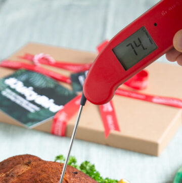 hand holding a thermapen
