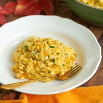 italian traditional pumpkin risotto.